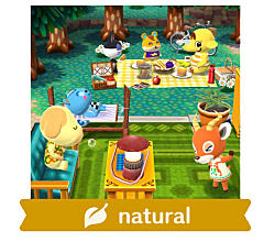 animal crossing pocket camp face guide